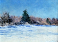 "Clear Winter day with Spruce, oil on linen, 9""x12"""